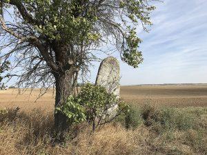 Der alte Menhir bei Feldengel